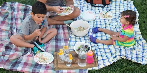 Packing a Family Picnic