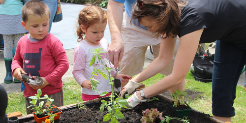 Kid-friendly Gardening: Indoor and Outdoor Garden Ideas